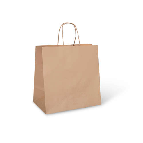 Brown Paper Take Away Bag With Twisted Handle