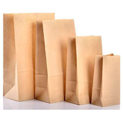 Food Bag Without Window preview