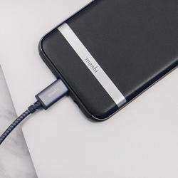 MOSHI Integra USB-C To USB-A Charge / Sync Cable Titanium Gray preview