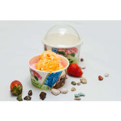 Hotpack 1000-Piece Paper Ice Cream Cup Multicolour 16 ounce
