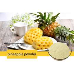 Tradex Pineapple Fruit Powder (100g/Pack) (1Box x 4Packs)
