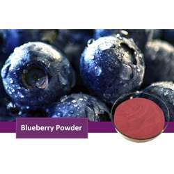 Tradex Blueberry Fruit Powder (100g/Pack) (1Box x 4Packs)