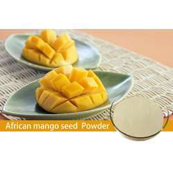Tradex Mango Fruit Powder (100g/Pack) (1Box x 4Packs)