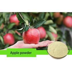 Tradex Apple Fruit Powder (100g/Pack) (1Box x 4Packs)