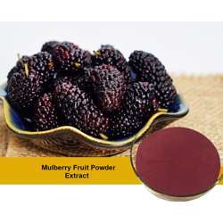 Tradex Mulberry Fruit Powder (100g/Pack) (1Box x 4Packs)